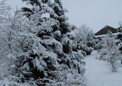 zima 2016 w Zaczarowanym Ogrodzie