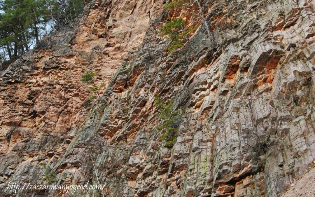 Organy Wielisławskie Kraina Wygasłych Wulkanów