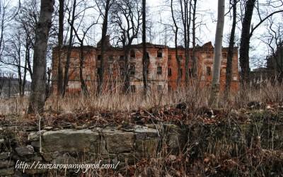 Ruiny pałacu  barokowego w Rząsniku