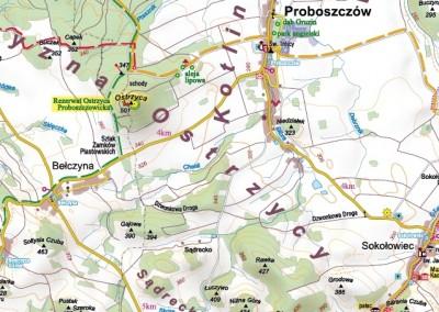 Droga Dzwonkowa od Sokołowca do Bełczyny