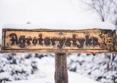 K1600_Zaczarowany Ogród zimą 88 (1 z 1)